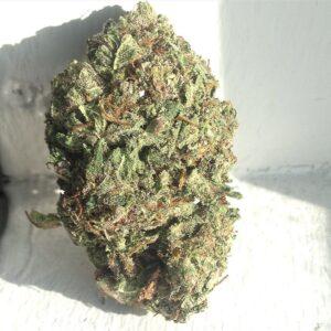 Buy Gorilla Glue Marijuana,Order Gorilla Glue Kush,Gorilla Glue For Sale Online,Buy Gorilla Glue Kush,Buy Gorilla Glue Online