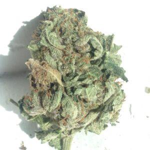 Order Heavy Hitter Strain ,Buy Heavy Hitter Cannabis,Buy Heavy Hitter Marijuana,Buy Heavy Hitter Weed ,Buy Heavy Hitter Kush ,Buy Heavy Hitter Strain