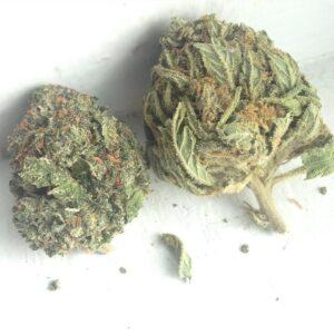 Order Pure Kush Strain ,Buy Pure Kush Marijuana Buy Pure Kush Weed,Buy Pure Kush Cannabis